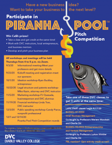 Piranha Pool Flyer
